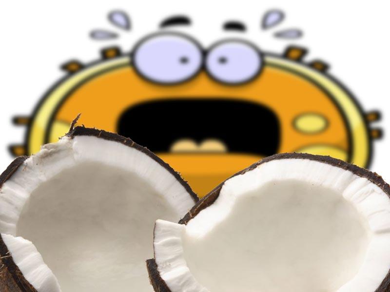 Aceite de coco, ¿sí, no?